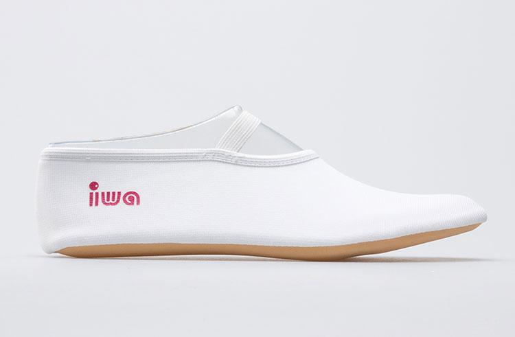 8e03e762ba46 250 Trampoline shoe IWA 2WEI